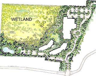 wetland plan